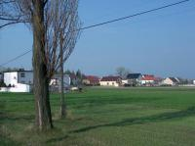 Ściborowice