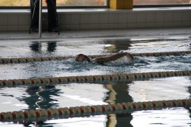 Galeria Liga pływacka 1