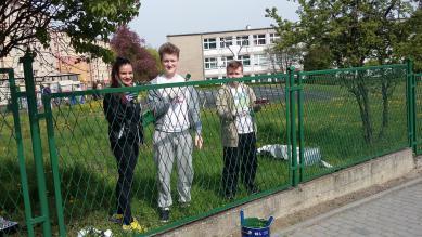 Galeria malowanie plotu