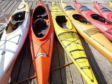 kayaks-908859_1920.jpeg