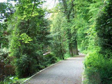 Park w Rogowie Opolskim