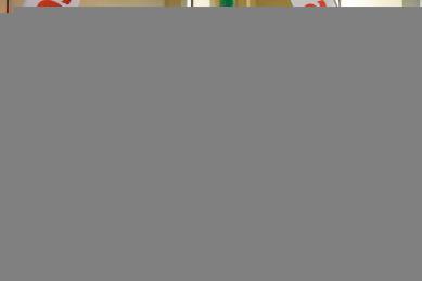 Galeria Rywalizacje zawodników Karate do-Shotokan Krapkowice