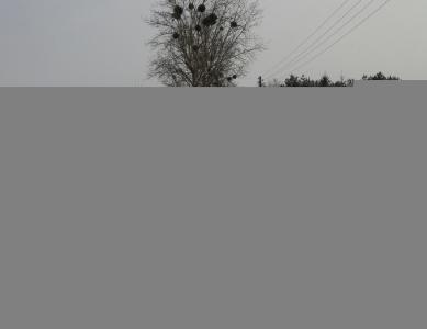 Pług śnieżny na drodze.