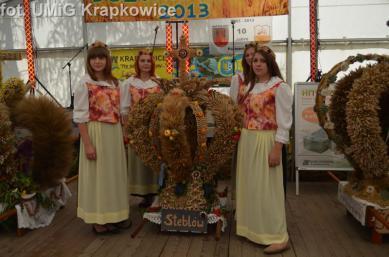 Galeria dozynki_26082013