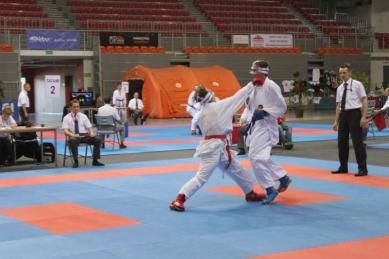 Galeria karate 2013